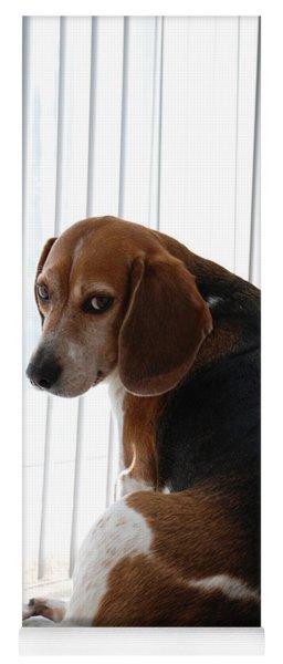 Beagle Attitude Yoga Mat