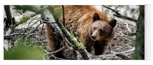 Bear In Trees Yoga Mat
