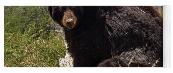 Bear Yoga Mat