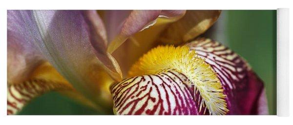 Bearded Iris Flower Mary Todd Yoga Mat