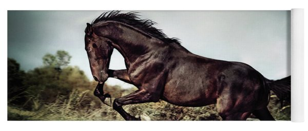 Beautiful Black Stallion Horse Running On The Stormy Sky Yoga Mat
