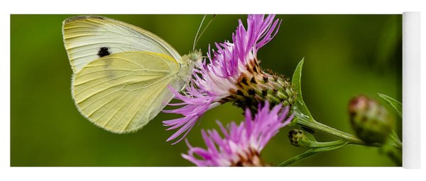 Beautiful Butterfly On Pink Thistle Yoga Mat