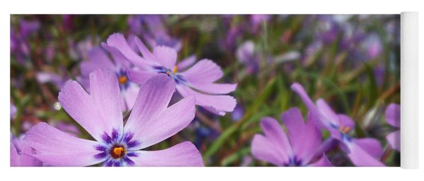 Beautiful Creeping Purple Phlox Yoga Mat