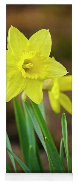 Beautiful Daffodil Flower Yoga Mat