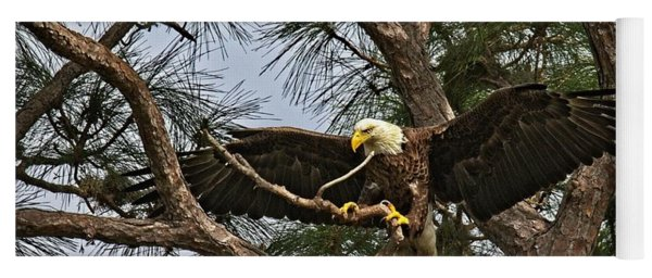Beautiful Florida Adult Bald Eagle  Yoga Mat