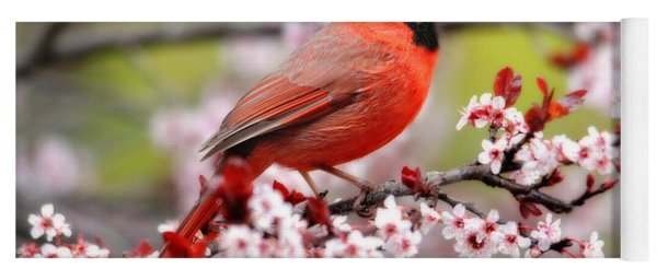 Beautiful Northern Cardinal Yoga Mat
