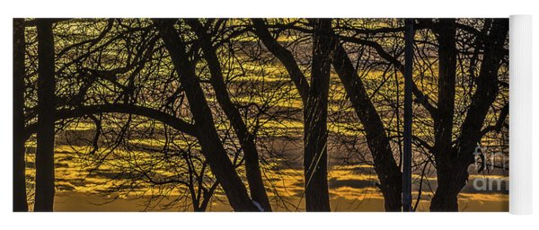 Beautiful Sunset Behind Bare Trees Yoga Mat