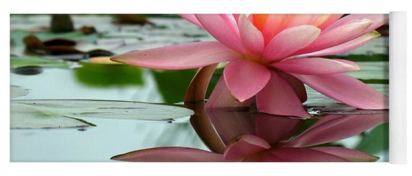 Beautiful Water Lily In A Pond Yoga Mat