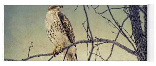 Red-tailed Hawk On Watch Yoga Mat