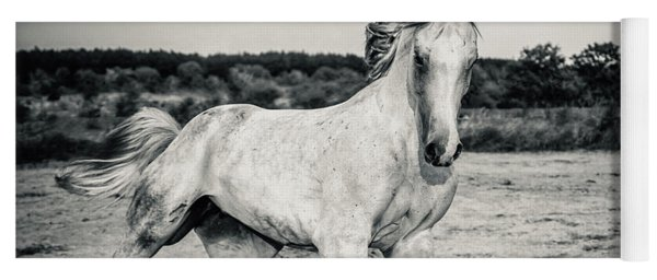 Beautyful White Horse Galloping Black And White Photography Yoga Mat