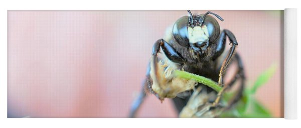 Bee Busy Yoga Mat
