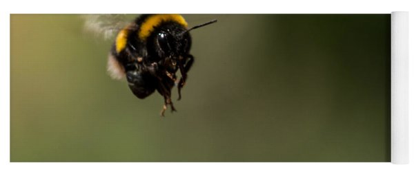 Bee Flying - View From Front Yoga Mat