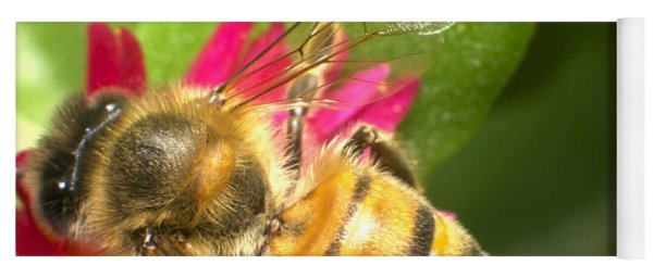 Bee Macro Shot Yoga Mat