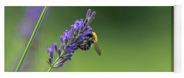 Bee On Lavender Yoga Mat