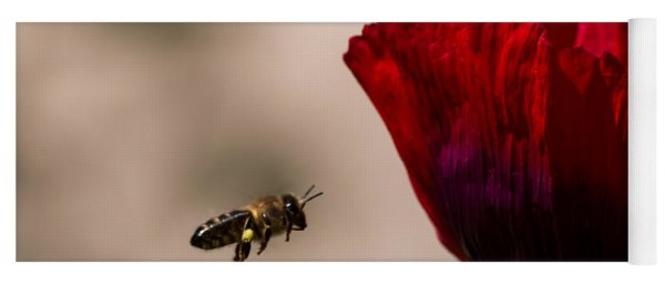Bee Right Profile Flying To Red Flower Yoga Mat