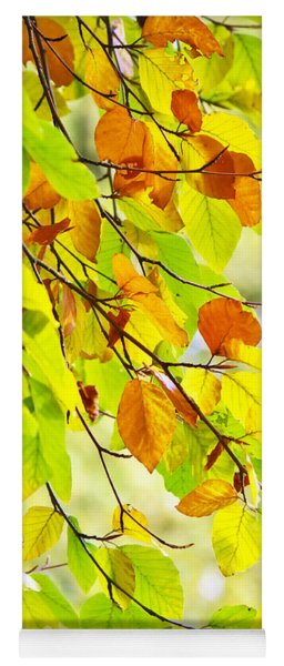 Beech Leaves In Autumn Yoga Mat
