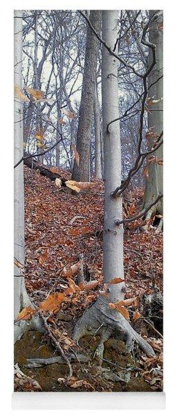 Beech Trees Yoga Mat