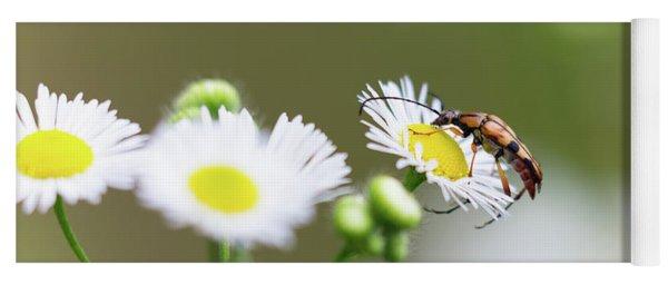 Beetle Daisy Yoga Mat