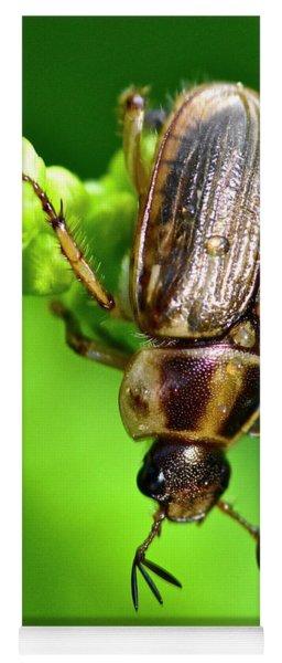 Beetle Yoga Mat