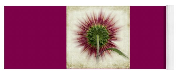 Yoga Mat featuring the photograph Behind The Sunflower by Patti Deters