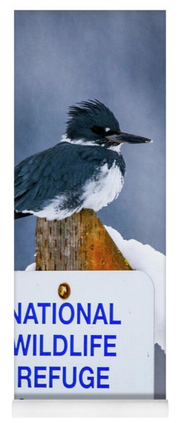 Belted Kingfisher Yoga Mat