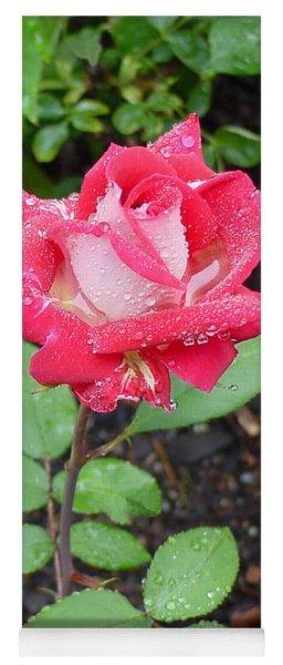 Bi-colored Rose In Rain Yoga Mat