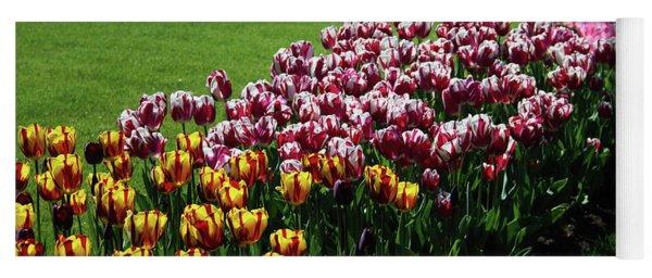 Multicolor Tulips Yoga Mat