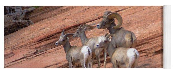 Big Horn Sheep, Zion National Park Yoga Mat