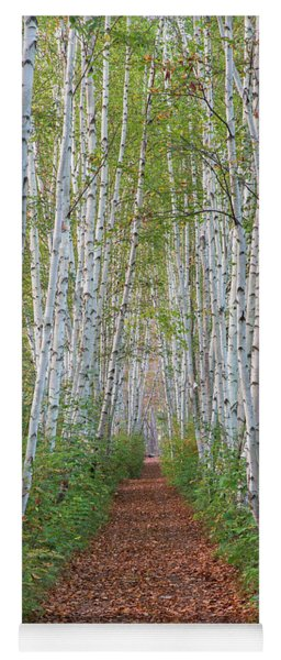 Birch Path Yoga Mat