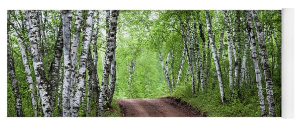 Yoga Mat featuring the photograph Birch Tree Forest Path #3 by Patti Deters