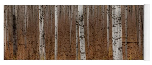Birch Trees Abstract #2 Yoga Mat