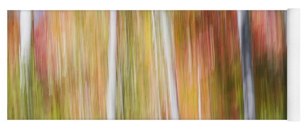 Birches In Sunny Fall Forest Yoga Mat