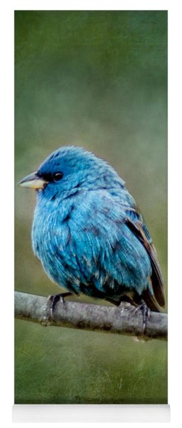 Bird In Blue Indigo Bunting Ginkelmier Inspired Yoga Mat