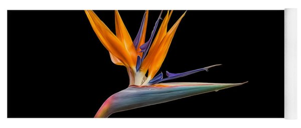 Bird Of Paradise Flower On Black Yoga Mat