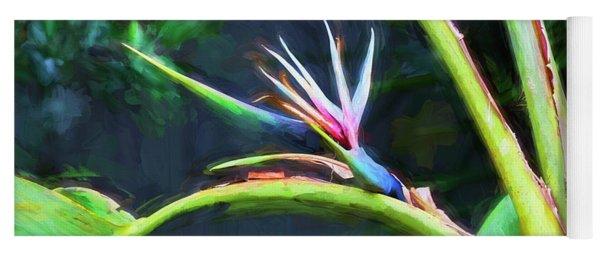 Bird Of Paradise Strelitzia Reginae 003 Yoga Mat