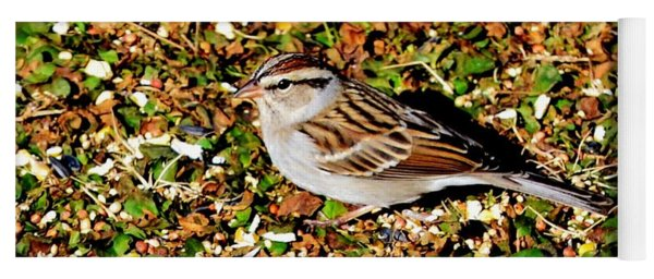 Bird On The Ground Yoga Mat