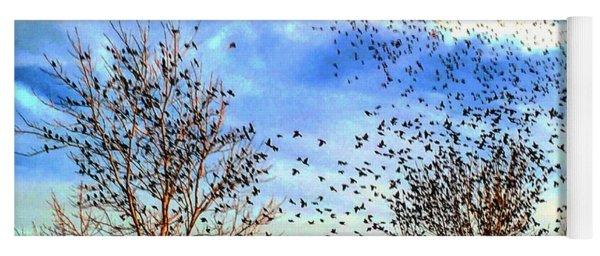 Bird Swarm Versus Hawks Yoga Mat