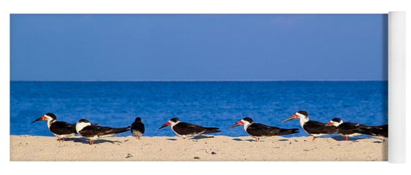 Birdline Yoga Mat