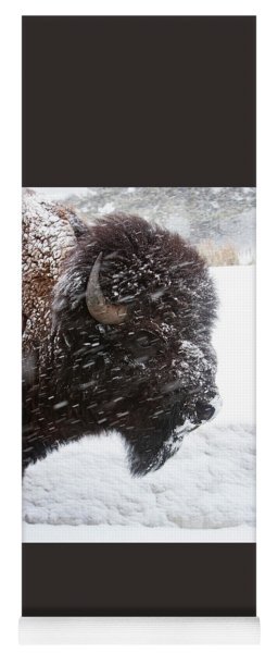 Bison In Snow Yoga Mat