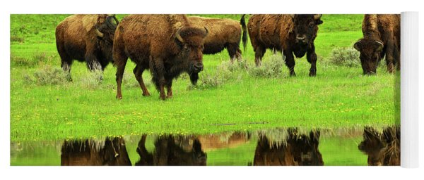 Bison Spring Reflections Yoga Mat