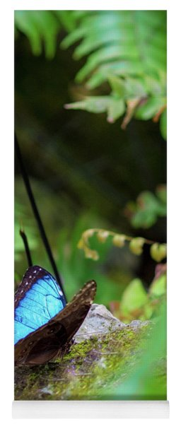 Black And Blue Butterfly Yoga Mat