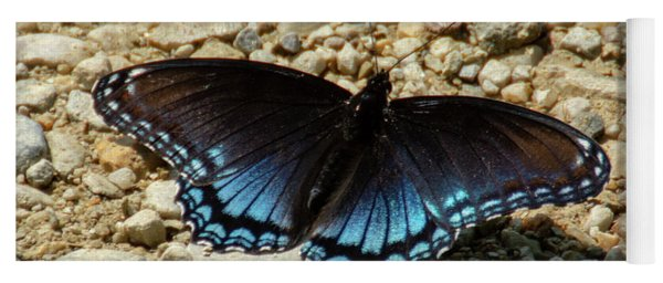 Black And Blue Monarch Butterfly Yoga Mat