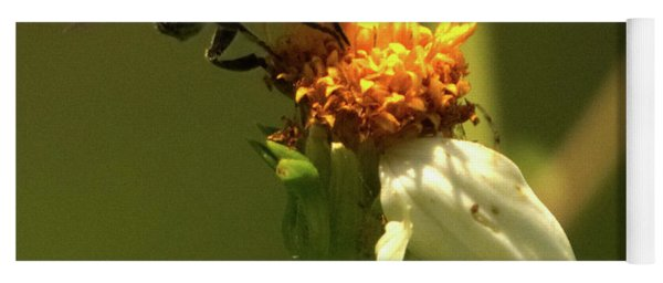 Black And Yellow Bee Pollinating Yoga Mat