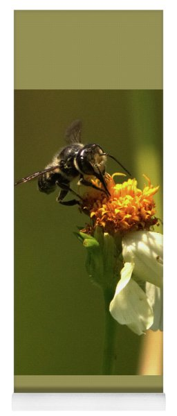 Black And Yellow Bee Pollinating Yoga Mat