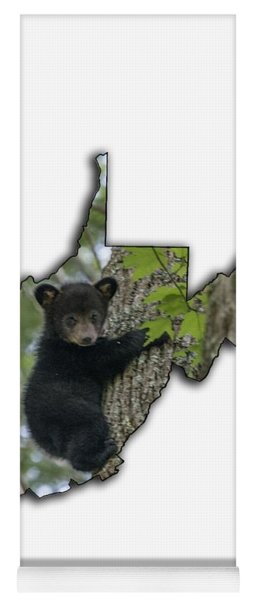 Yoga Mat featuring the photograph Black Bear Cub Climbing Down A Tree by Dan Friend