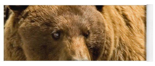 Black Bear Yoga Mat