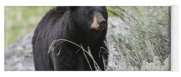 Black Bear Sow Yoga Mat