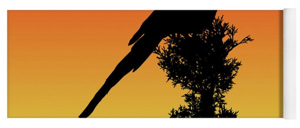 Black-billed Magpie Silhouette At Sunset Yoga Mat