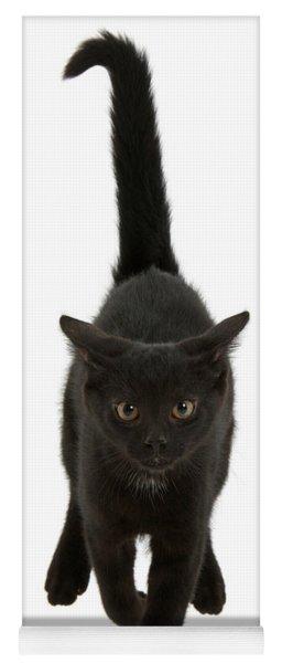 Black Cat On The Run Yoga Mat