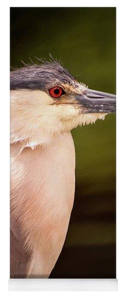 Black Crowned Night Heron In Frederick Yoga Mat
